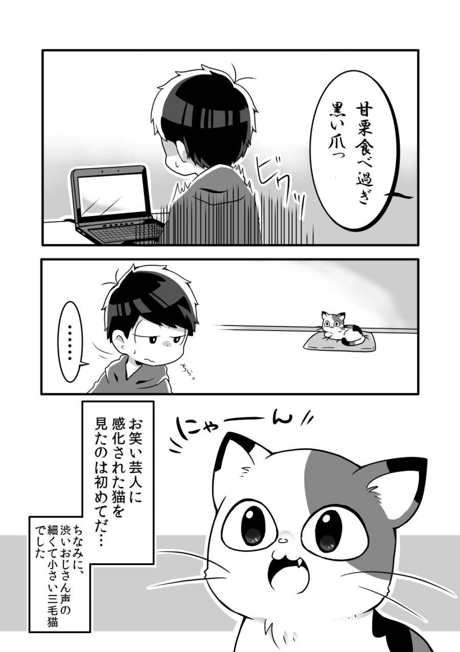 shiratsuyu_neko004